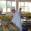 ارتفاع المورد نوعية لى تشى تجهيز الفول السوداني مصنع تجهيز منتجات المزارع السعر