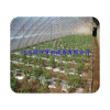 Hebei plastic greenhouse fruit irrigation PE drip irrigation pipe