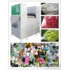 安晶龙ANGELONAL1S1C8256彩色废塑料分色机