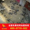 Large wholesale herbal medicines herbal clay soil provided free technical guidance, recycled product