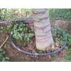 河南优质小管出流|小管出流价格,图片
