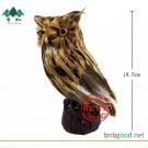 Owl simulation model J39102 bioinstrumentation primary school science teaching instrument