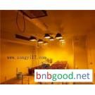 Ceiling light source artificial climate room Changsha comprehensive instrument biological instrumen