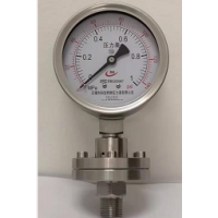 Stainless steel pressure gauge for petroleum drilling and chemical industry